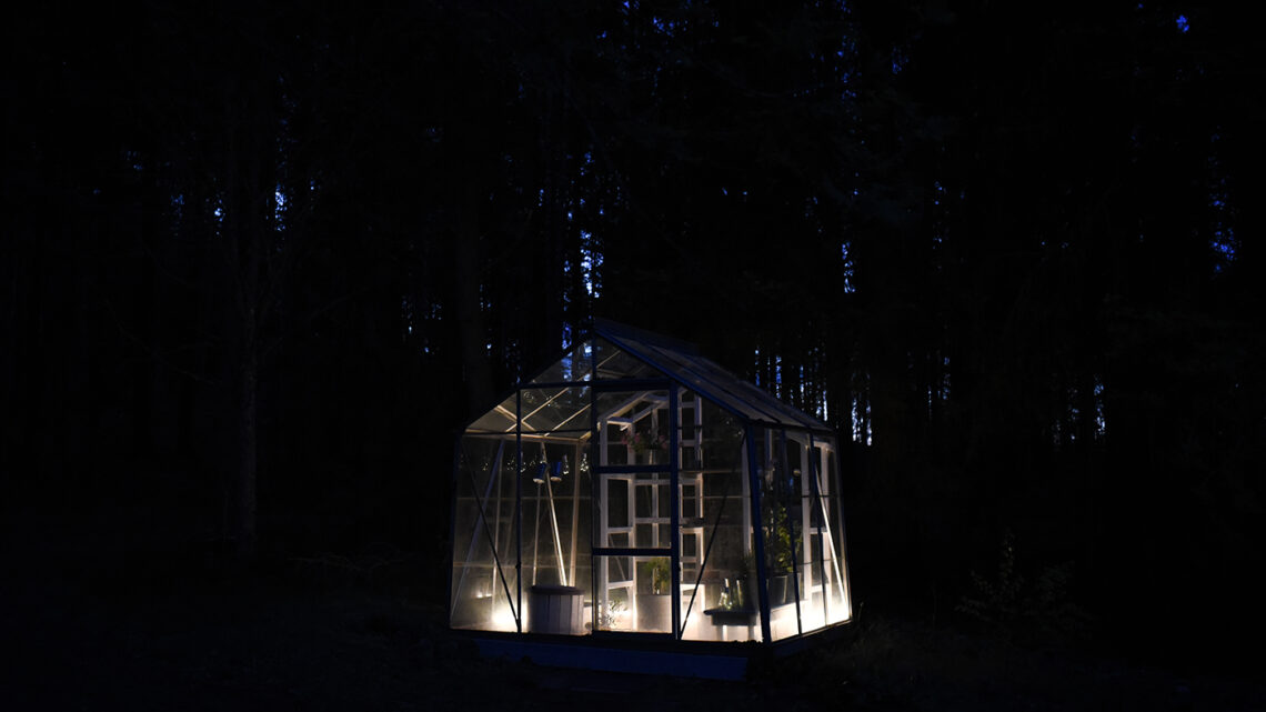 Med belysning blir växthuset ännu mysigare